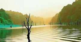 Kerala-5