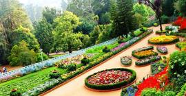 Mysore Coorg